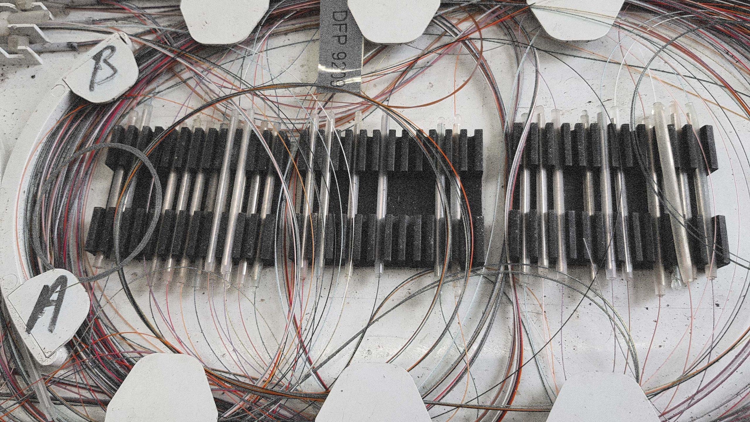 Photo of fibre optic cables